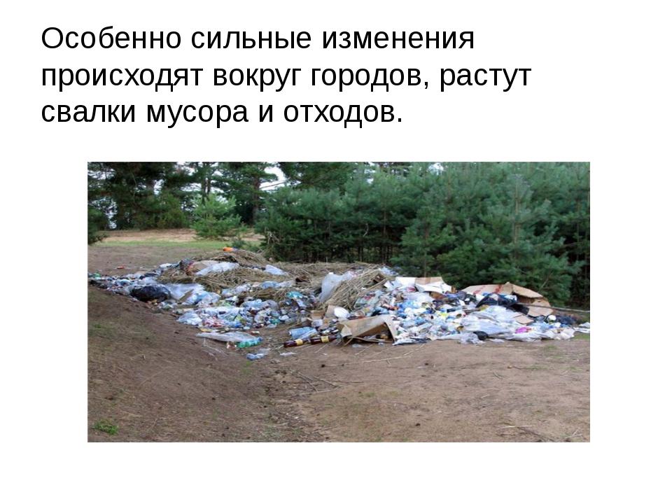Особенно сильные изменения происходят вокруг городов, растут свалки мусора и...