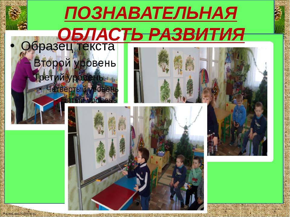 ПОЗНАВАТЕЛЬНАЯ ОБЛАСТЬ РАЗВИТИЯ FokinaLida.75@mail.ru