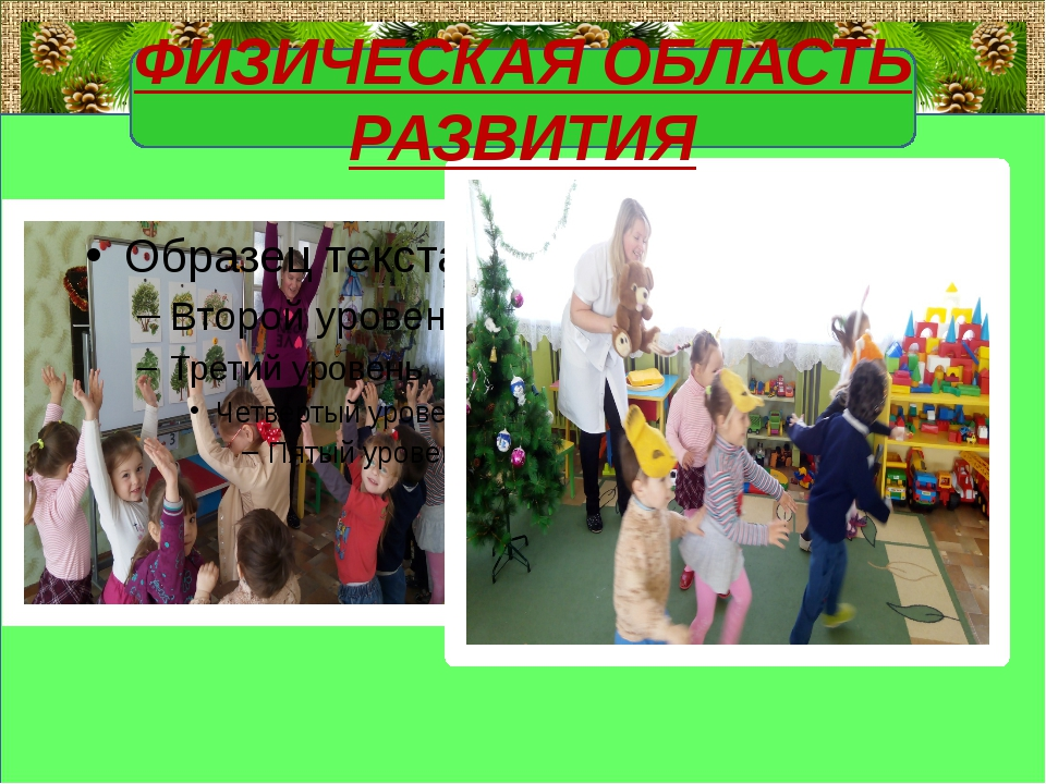 ФИЗИЧЕСКАЯ ОБЛАСТЬ РАЗВИТИЯ FokinaLida.75@mail.ru