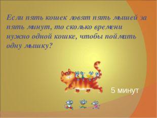 Если пять кошек ловят пять мышей за пять минут, то сколько времени нужно одно