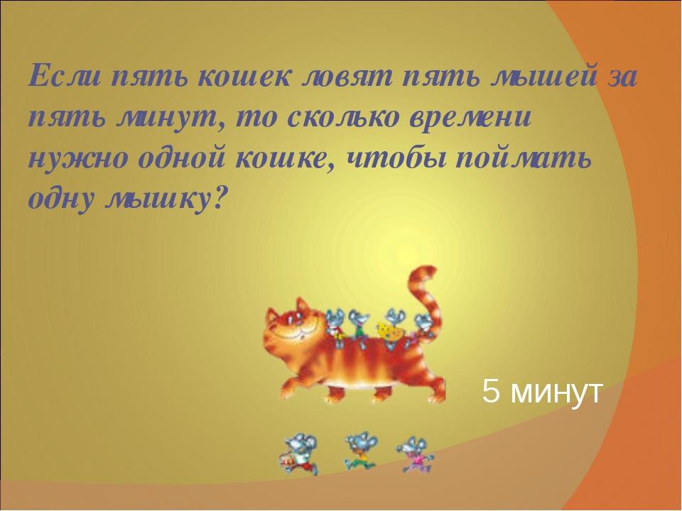 Если пять кошек ловят пять мышей за пять минут, то сколько времени нужно одно...