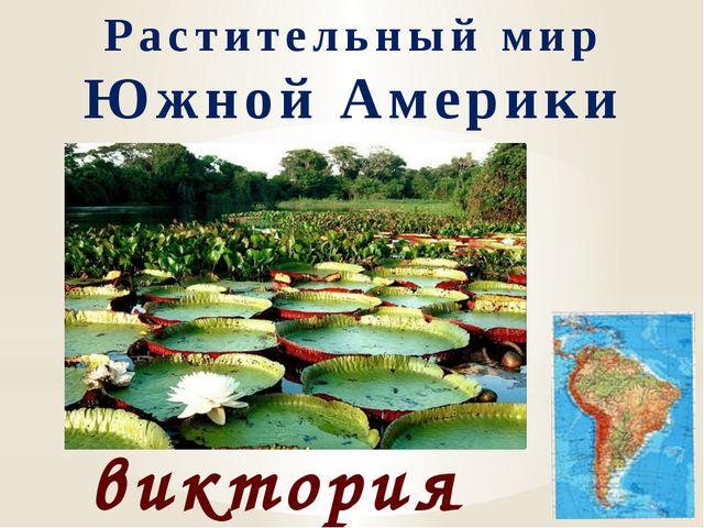 Растительный мир Южной Америки виктория регия