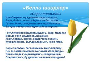 «Сары тюльпан» Илькбаарьни мужделеген сары тюльпан, Бари, бойле солмасайдынъ