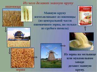 Манную крупу изготавливают из пшеницы (из центральной части пшеничного зерна,
