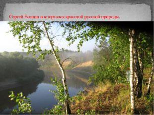 Сергей Есенин восторгался красотой русской природы.