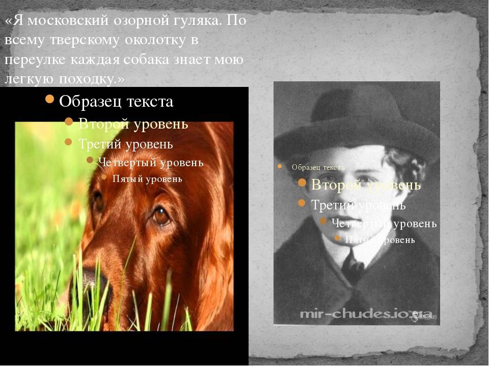 «Я московский озорной гуляка. По всему тверскому околотку в переулке каждая с...