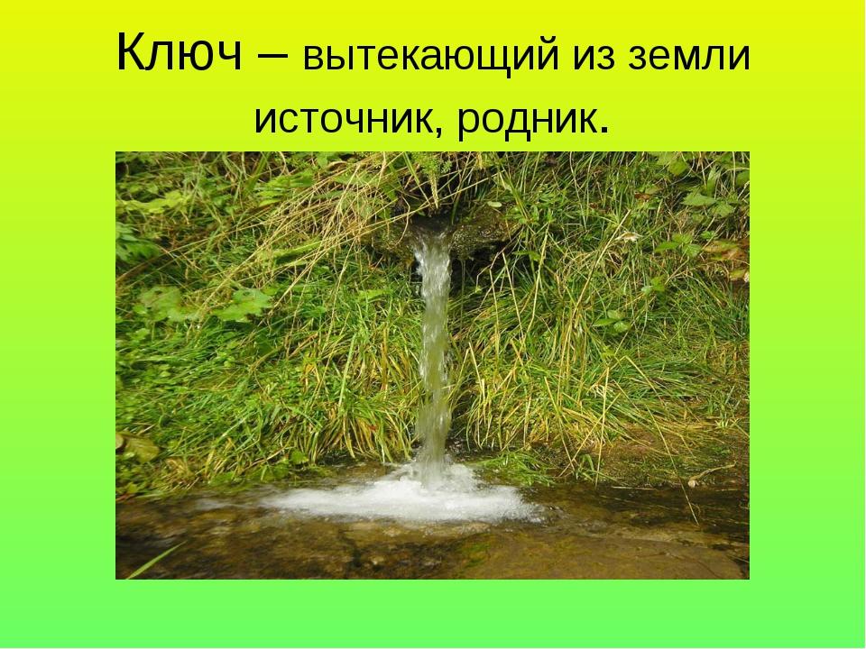 Ключ – вытекающий из земли источник, родник.