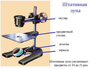 Штативная лупа штатив зеркало предметный столик окуляр Штативная лупа увеличи