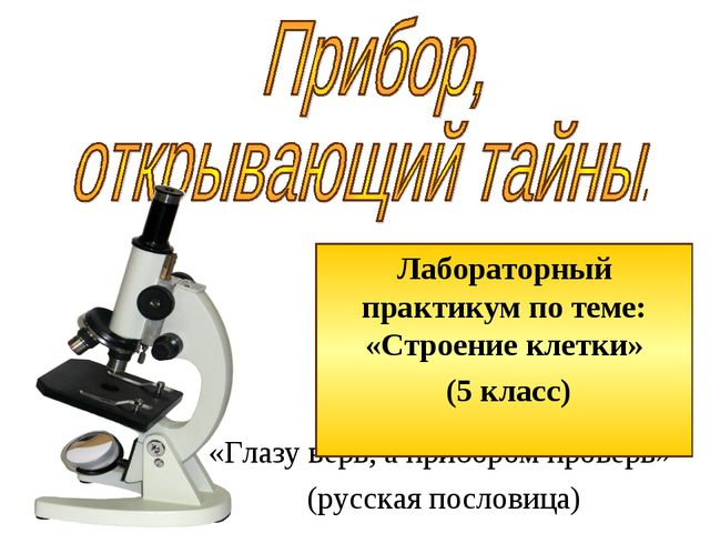 «Глазу верь, а прибором проверь» (русская пословица) Лабораторный практикум п...