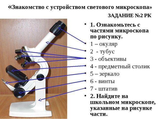 1. Ознакомьтесь с частями микроскопа по рисунку. 1 – окуляр 2 - тубус 3 - объ...