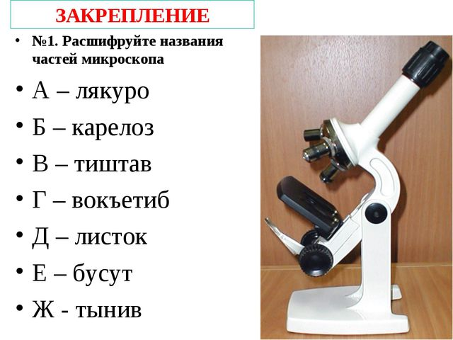 ЗАКРЕПЛЕНИЕ №1. Расшифруйте названия частей микроскопа А – лякуро Б – карелоз...