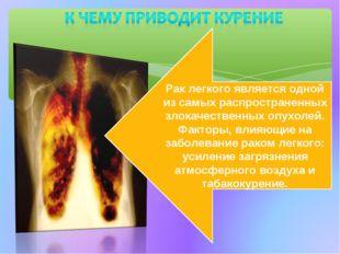 Рак легкого является одной из самых распространенных злокачественных опухолей