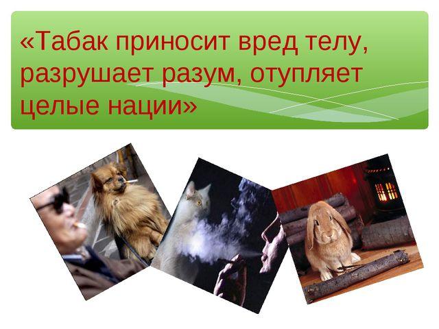 «Табак приносит вред телу, разрушает разум, отупляет целые нации»