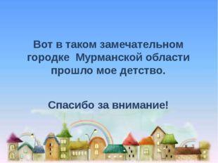 Вот в таком замечательном городке Мурманской области прошло мое детство. Спа