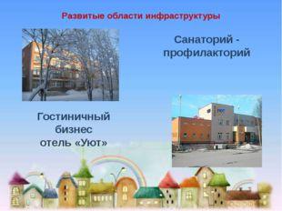 Развитые области инфраструктуры Санаторий - профилакторий Гостиничный бизнес