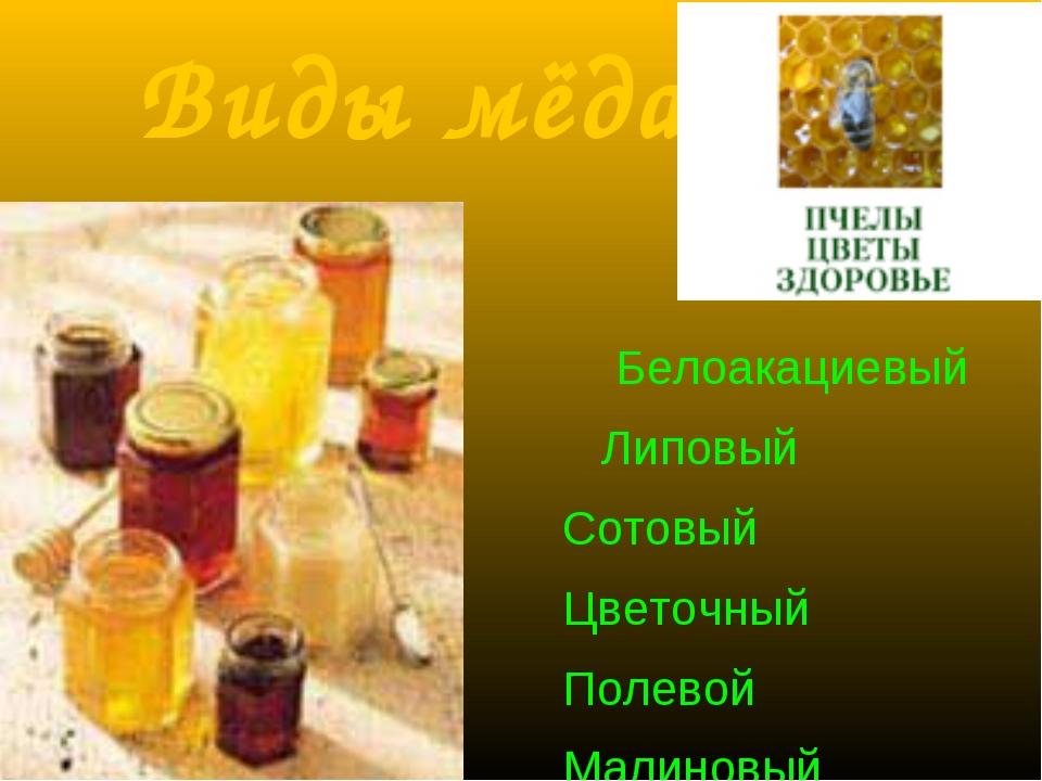 Виды мёда Белоакациевый Липовый Сотовый Цветочный Полевой Малиновый Гречишный...