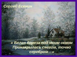 « Белая береза под моим окном Принакрылась снегом, точно серебром…» Сергей Ес