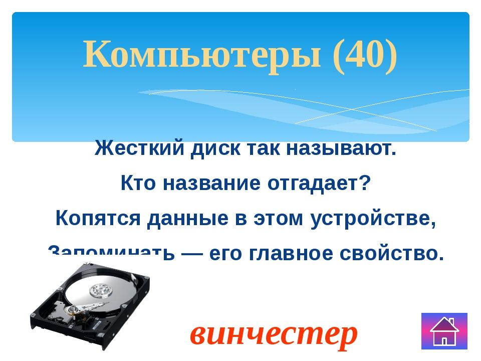 Что общего между пальцами, счетными палочками, калькулятором. Технологии (10)...