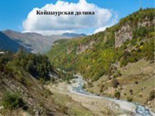 Койшаурская долина