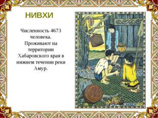 Численность 4673 человека. Проживают на территории Хабаровского края в нижнем