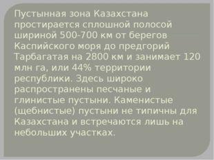 Пустынная зона Казахстана простирается сплошной полосой шириной 500-700 км от