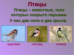 Птицы Птицы – животные, тело которых покрыто перьями. У них две ноги и два кр