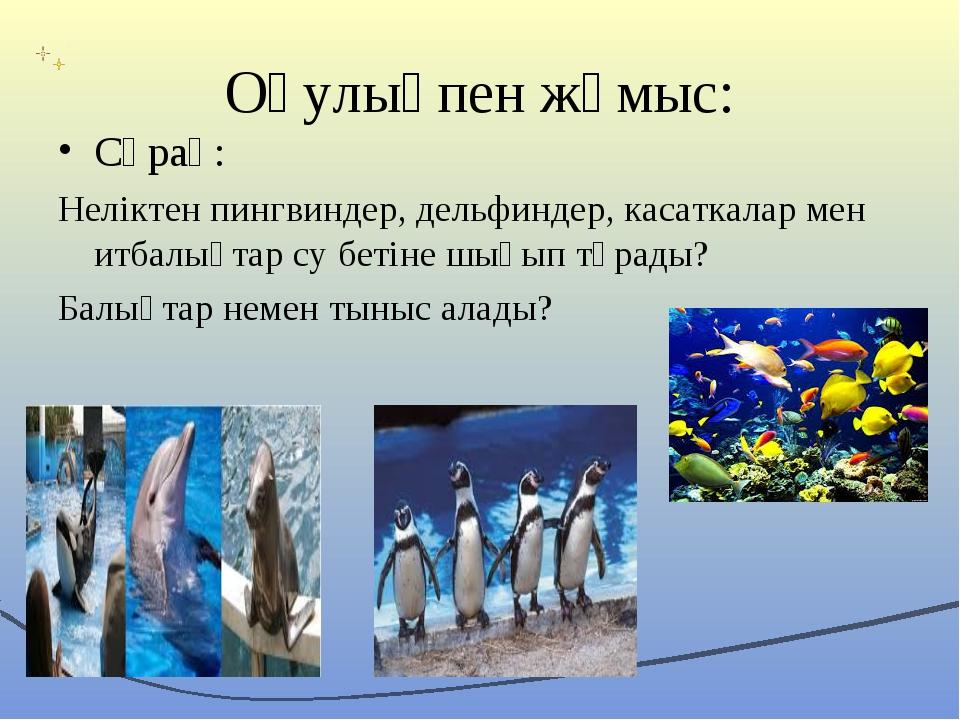 Оқулықпен жұмыс: Сұрақ: Неліктен пингвиндер, дельфиндер, касаткалар мен итбал...