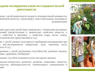 В книгах Н. М. Зубковой собрано большое количество разнообразных и интересных