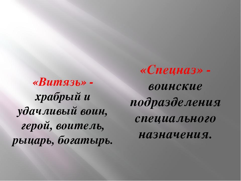 «Витязь» - храбрый и удачливый воин, герой, воитель, рыцарь, богатырь. «Спецн...