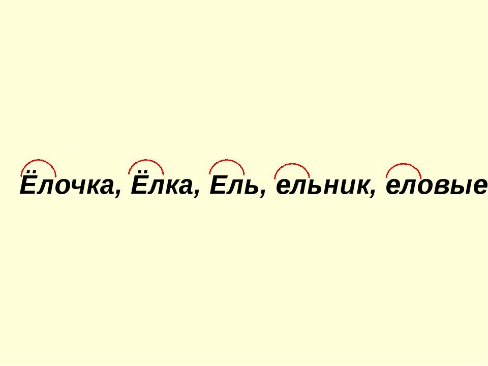 Ёлочка, Ёлка, Ель, ельник, еловые.