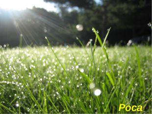 Крапельки водички зранку На травичці, по землі... Грають в барвах на світанк
