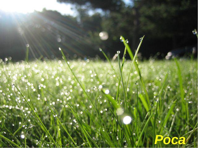 Крапельки водички зранку На травичці, по землі... Грають в барвах на світанк...