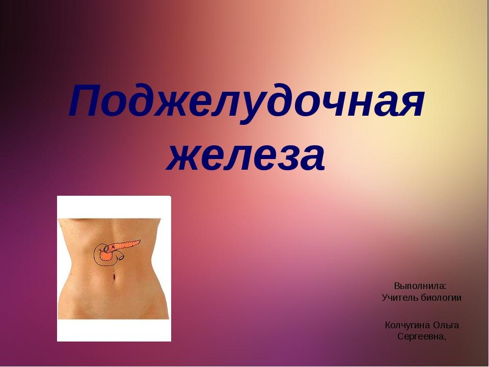 Поджелудочная железа Выполнила: Учитель биологии Колчугина Ольга Сергеевна,