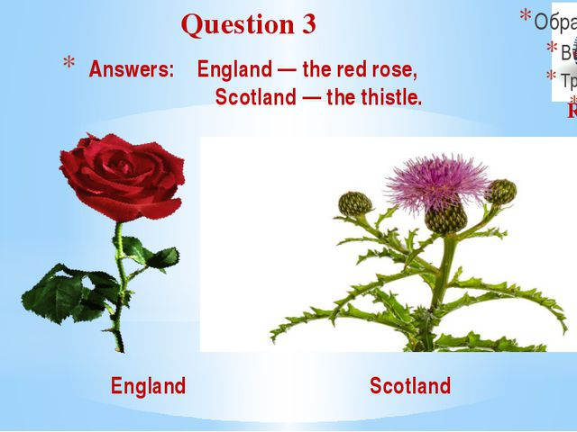 Answers: England — the red rose, Scotland — the thistle. Question 3 Round I E...
