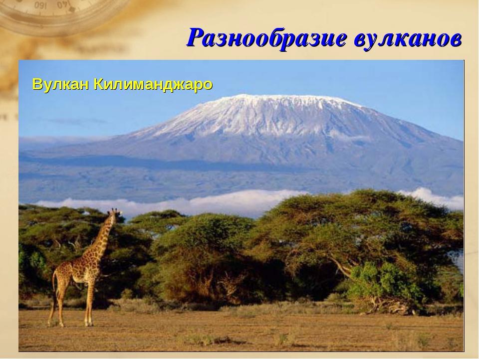 Разнообразие вулканов Вулкан Килиманджаро