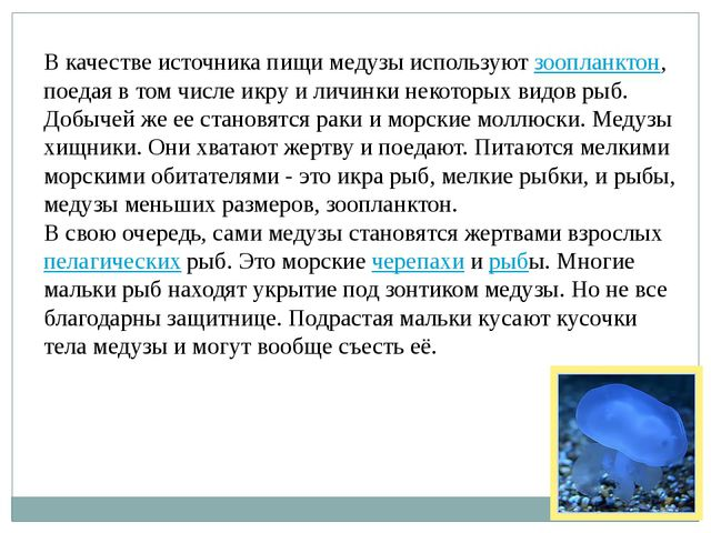 В качестве источника пищи медузы используютзоопланктон, поедая в том числе и...