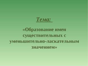 Тема: «Образование имен существительных с уменьшительно-ласкательным значением»