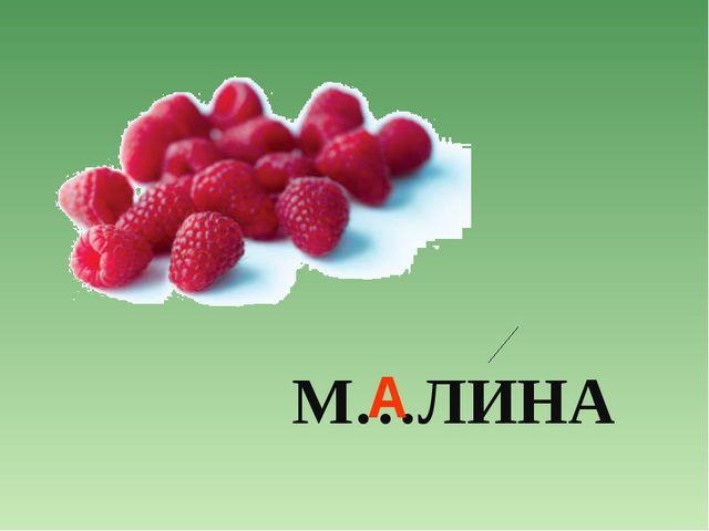 М…ЛИНА А
