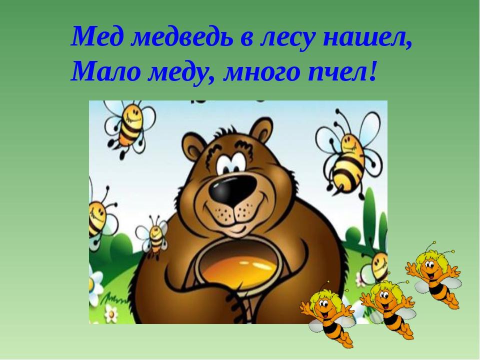 Мед медведь в лесу нашел, Мало меду, много пчел!