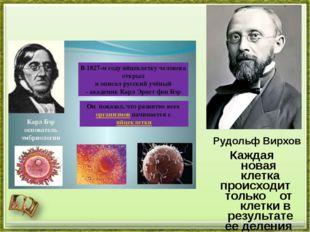 Рудольф Вирхов Каждая новая клетка происходит только от клетки в результате е
