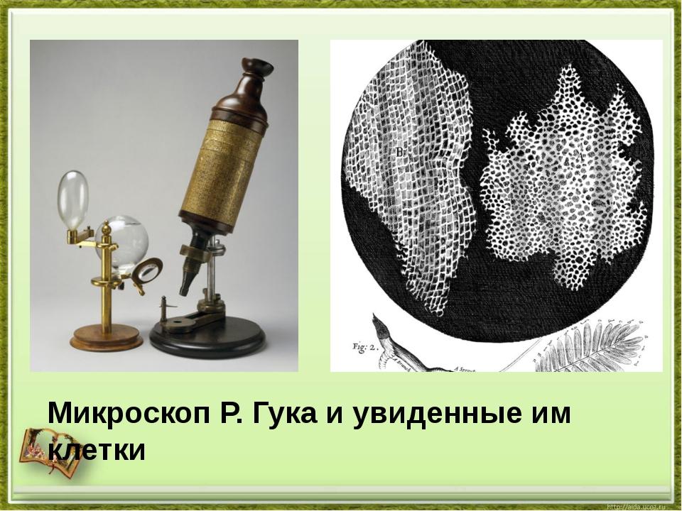 Микроскоп Р. Гука и увиденные им клетки
