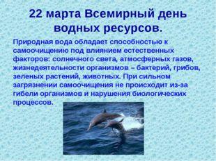 22 марта Всемирный день водных ресурсов. Природная вода обладает способностью