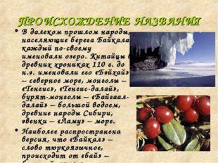 ПРОИСХОЖДЕНИЕ НАЗВАНИЯ В далеком прошлом народы, населяющие берега Байкала, к
