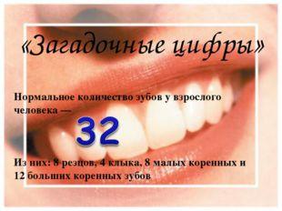 «Загадочные цифры» Нормальное количество зубов у взрослого человека — Из них:
