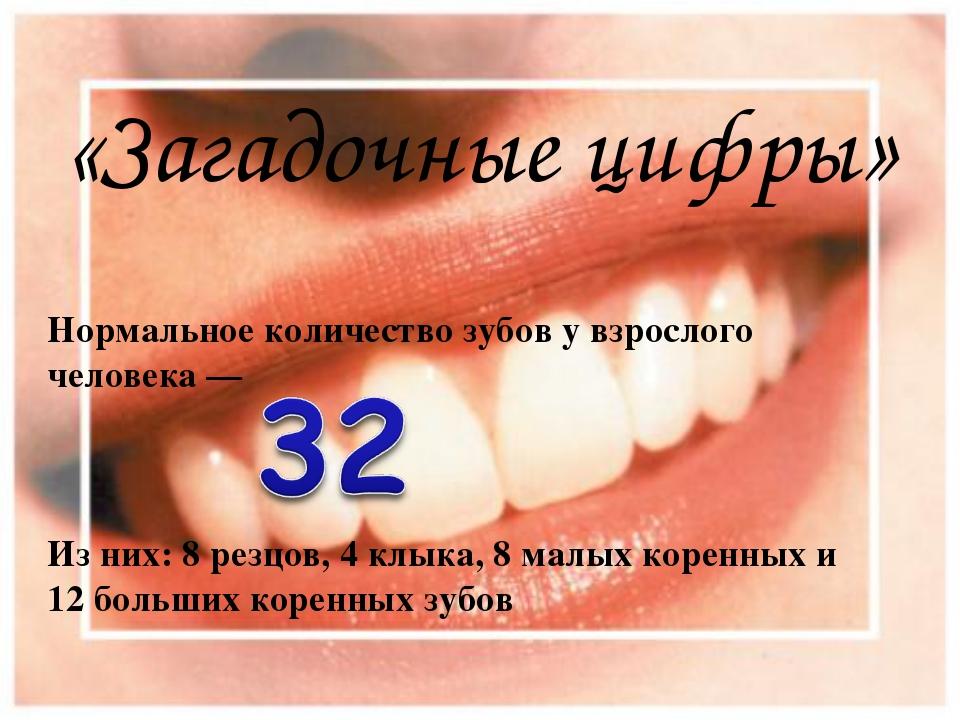 «Загадочные цифры» Нормальное количество зубов у взрослого человека — Из них:...