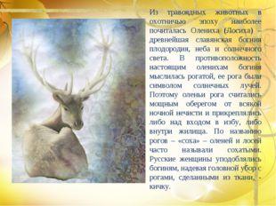 Из травоядных животных в охотничью эпоху наиболее почиталась Олениха (Лосиха)
