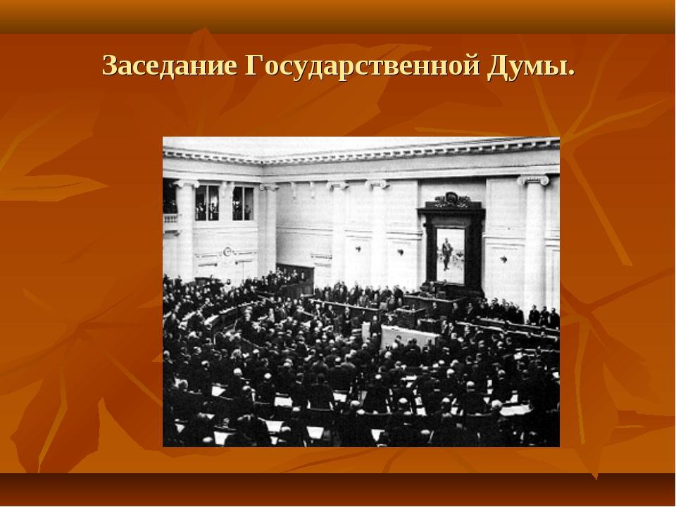 Заседание Государственной Думы.