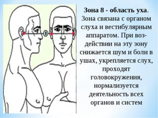 Зона 8 - область уха. Зона связана с органом слуха и вестибулярным аппаратом.