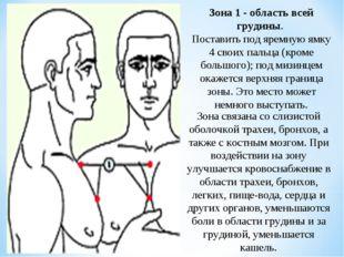 Зона 1 - область всей грудины. Поставить под яремную ямку 4 своих пальца (кро