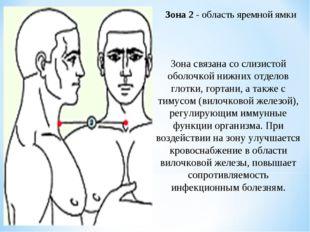 Зона 2 - область яремной ямки Зона связана со слизистой оболочкой нижних отде